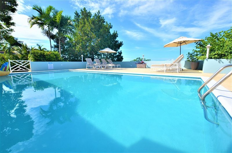 FULLY STAFFED! POOL! BUTLER! CHEF! BEACH CLUB! SEAVIEWS! Serendipity, 5BR, vacation rental in Rose Hall