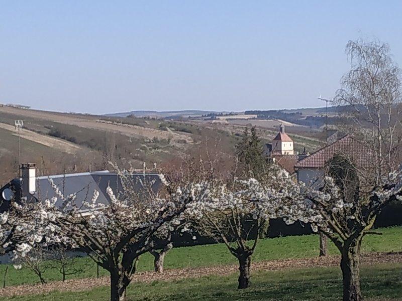In april staan de kersenbomen van Yonne in bloei, hier Jussy.