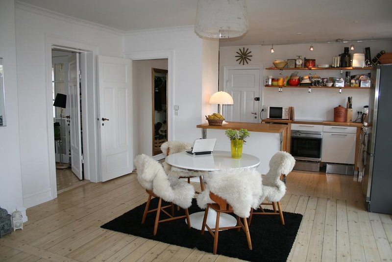 5 room penthouse apartment Copenhagen, holiday rental in Gentofte Municipality