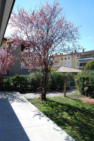 Appartamento San Martino, vakantiewoning in Castiglione Delle Stiviere