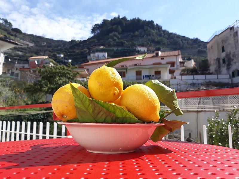 Osolemiohouse-costa d amalfi- wi fi e city Tax gratis, alquiler de vacaciones en Minori