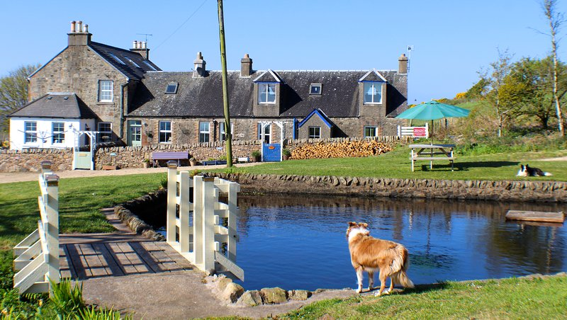Millpond Cottage, Isle of Arran, vacation rental in Kildonan