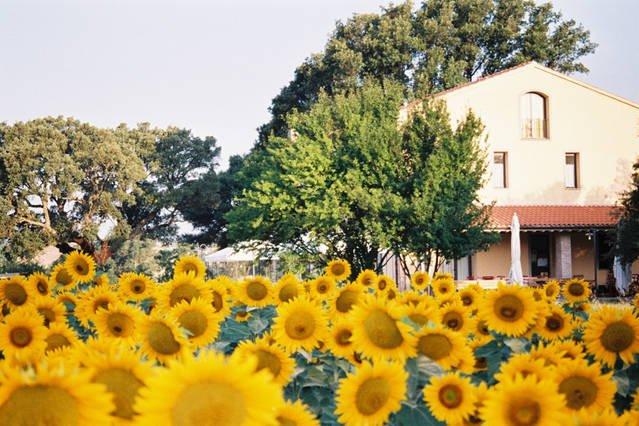Casale con piscina in Toscana, vacation rental in Ribolla