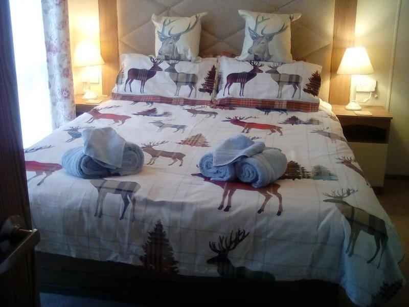 Master bedroom with Ensuite bath / shower