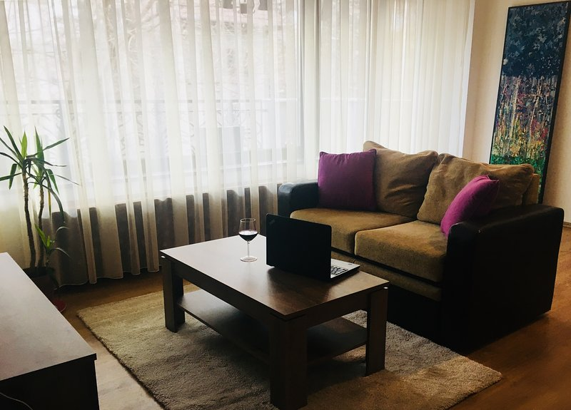 Cozy apartment in Bucharest near Herastrau park, holiday rental in Chiajna