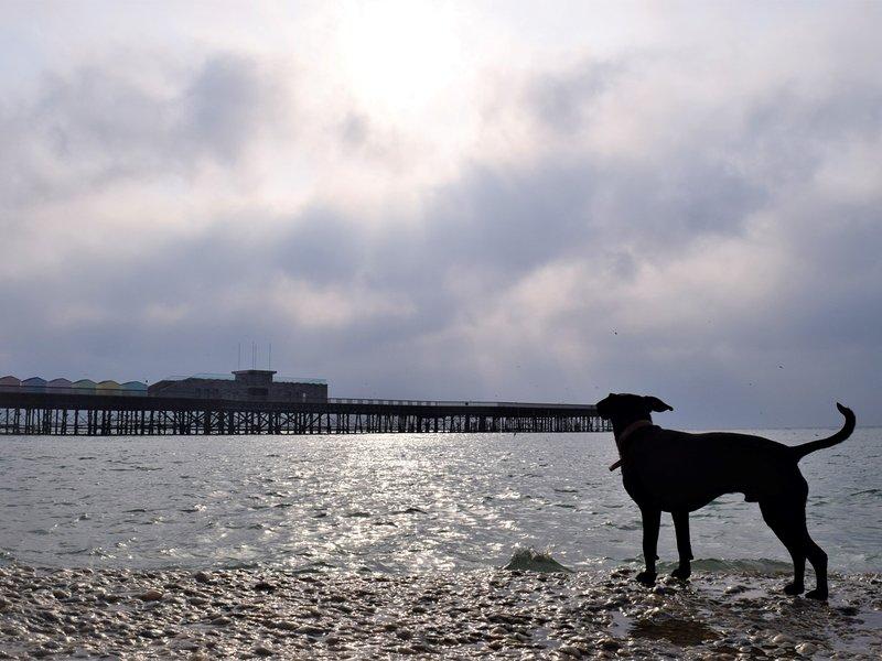 Lovely walks along the beach