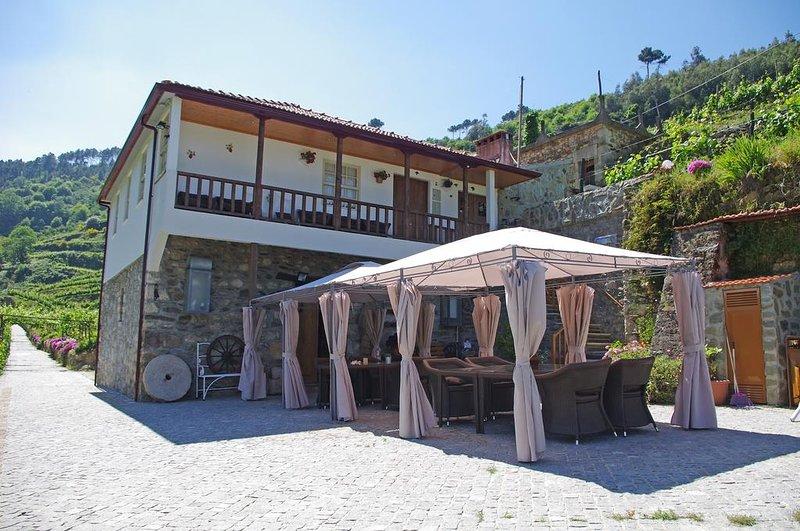 Nice villa with swimming-pool, holiday rental in Santa Marta de Penaguiao