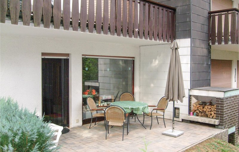 Beautiful home in E-38644 Goslar with WiFi and 1 Bedrooms (DAN167), holiday rental in Hahnenklee-Bockswiese