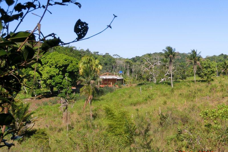 Agriturismo circondato da alberi da frutta tropicale su 26 ettari di terreno privato e sempre verde.