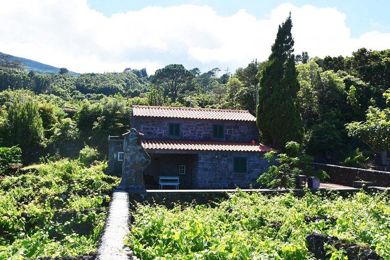 Laurel Villa, Pico, Azores, casa vacanza a Santo Amaro