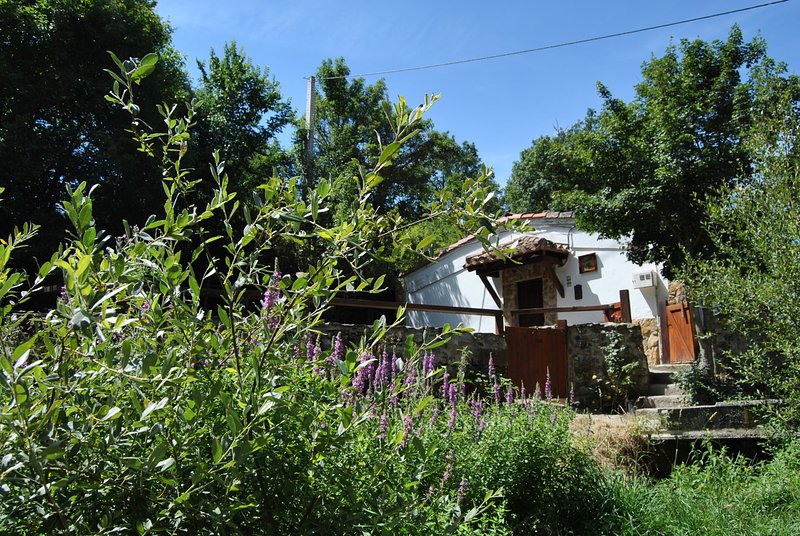 Casa del Rio en Reocin de los Molinos, Cantabria, holiday rental in Reinosa