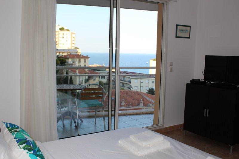 Monaco, sea view, bright studio with balcony, vacation rental in Beausoleil