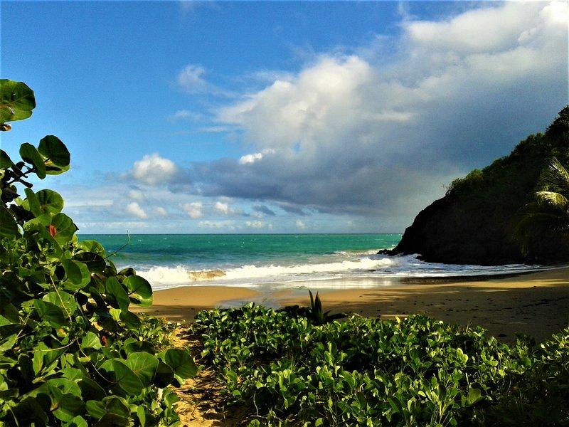 Playa salvaje a 250 m.