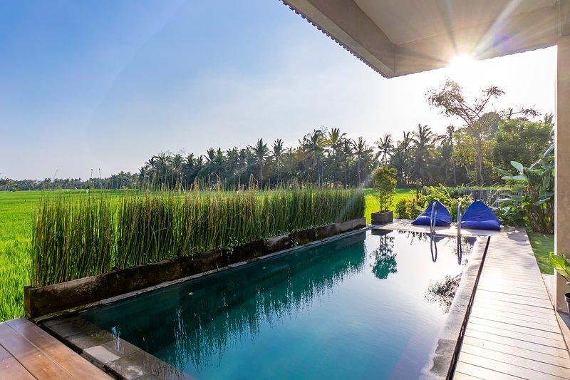 Casa Avana Rice Field View Villa, holiday rental in Bedulu