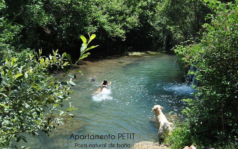 Poza de baño natural a 5 minutos de las casas PIN , EN REOCIN DE LOS MOLINOS, Cantabria, Spain