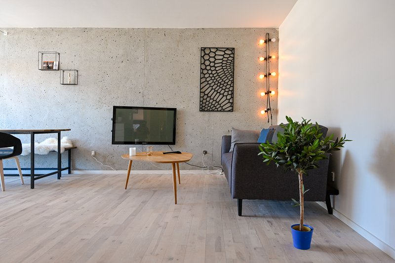 Super cozy two-bedroom apartment in Copenhagen Osterbro, holiday rental in Gentofte Municipality