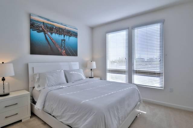 Master Bedroom with Queen Bed + Walk-in closet