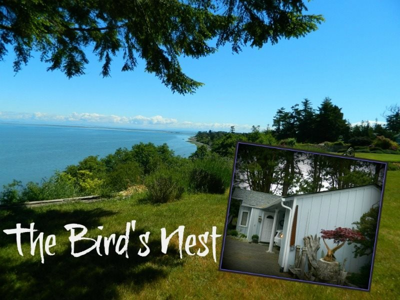Bird and wildlife watchers, check this home that overlooks the Strait of Juan de, holiday rental in Carlsborg