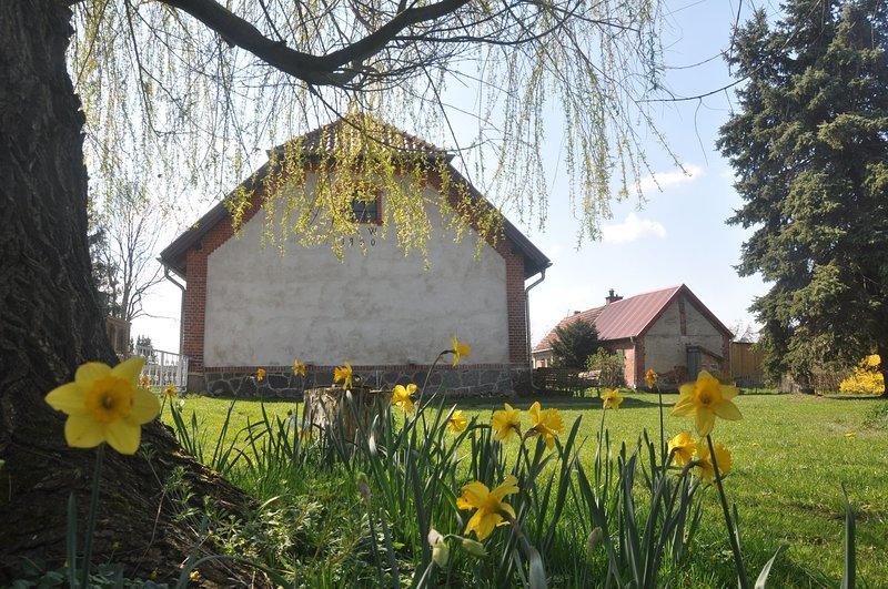 Ferienhaus Ilse Bilse  - Cottage auf dem Lande, aluguéis de temporada em Parchim