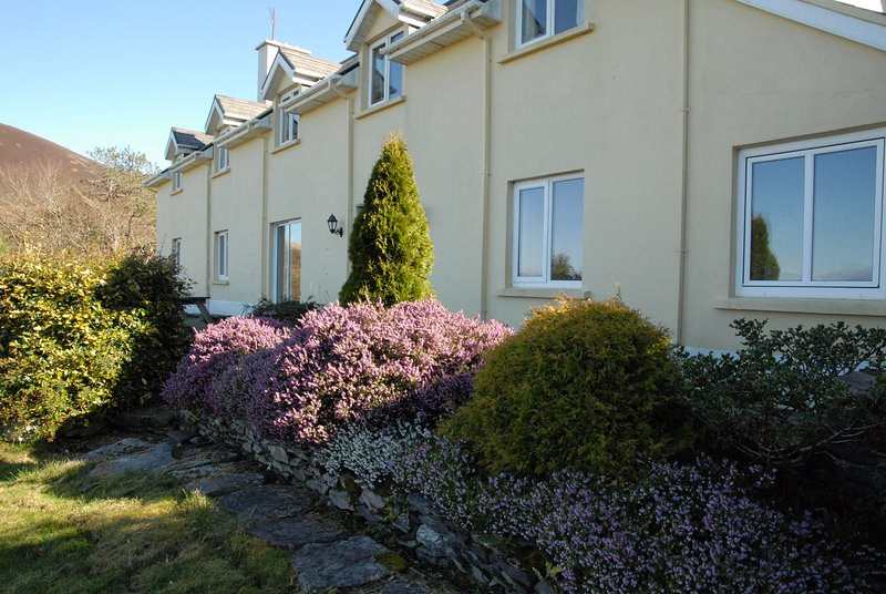 Amazing house with sea view & Wifi, vacation rental in Ballinasloe