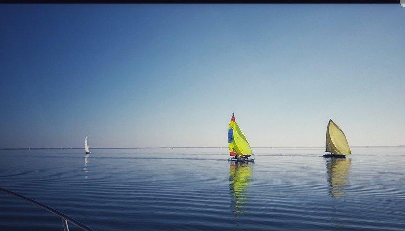 Chalet 6 personnes avec vue sur le lac, location de vacances à Biscarrosse