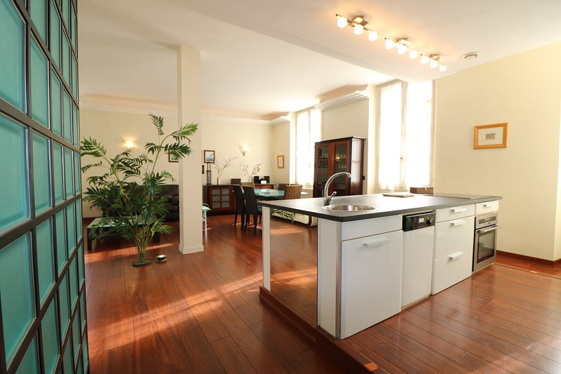 NEW!! Bright and airy appartment with 33m² terrace set in the heart of SARLAT, Ferienwohnung in Sarlat-la-Canéda