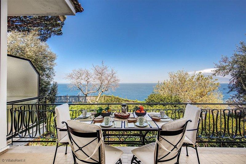 Villa Donna Elisa Beautiful Apartment In Wonderful Villa Sorrento