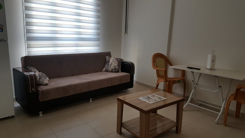 Hatay Antakya City Center Apartment No:1 (1+1 50m2), casa vacanza a Antakya