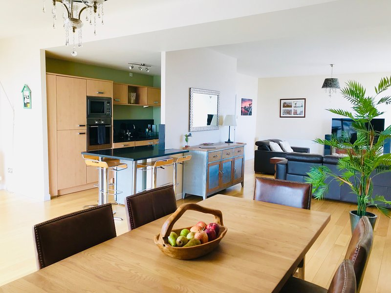 View from open plan kitchen dining room