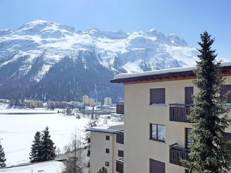 Chesa Sonnalpine B 46 Chalet in St Moritz