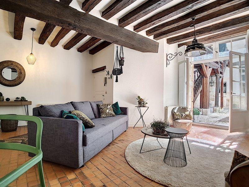 Appartement de Charme Vieux Tours, holiday rental in La Membrolle-sur-Choisille