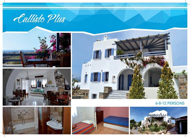'Callisto Plus' Villa in Paros, vacation rental in Lefkes