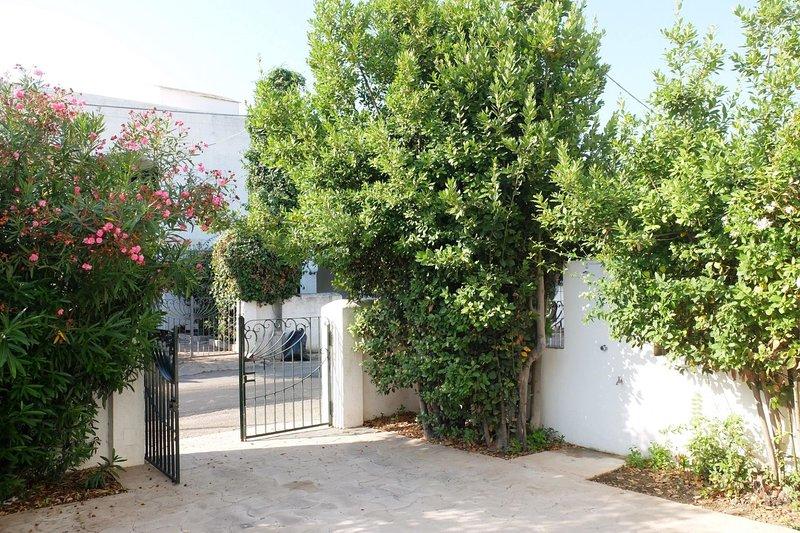 Villa Lisa | 50mt mare, spazio esterno, posto auto, holiday rental in Scala di Furno