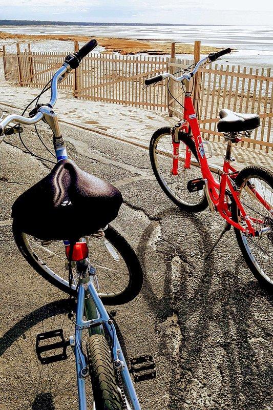 Fai un giro sulle 2 bici fornite!