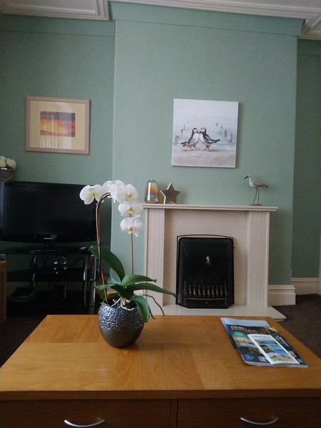 Relaxing lounge area with living flame  gas fire.