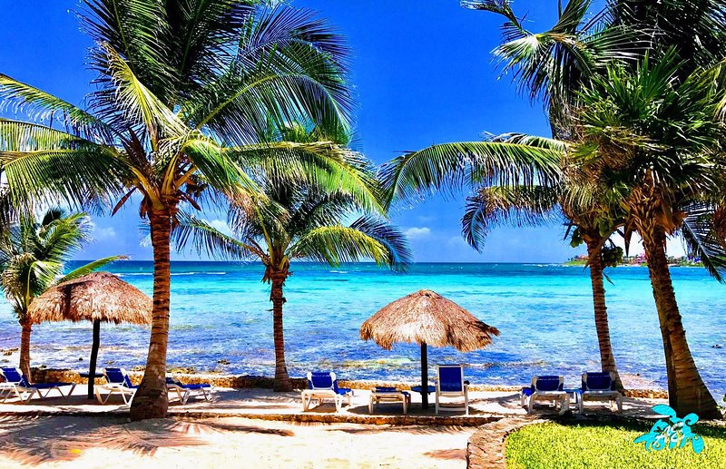 Have the BEST of Akumal: Private large beach, fabulous snorkeling right off shore and memorable view
