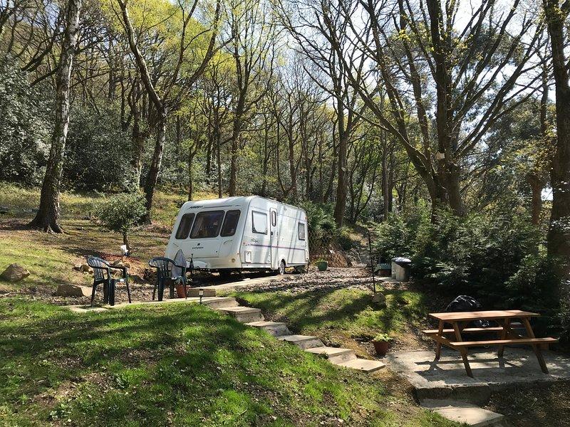 Cosy Caravan - nr Betws-y-Coed - Glamping in Style, vacation rental in Betws-y-Coed
