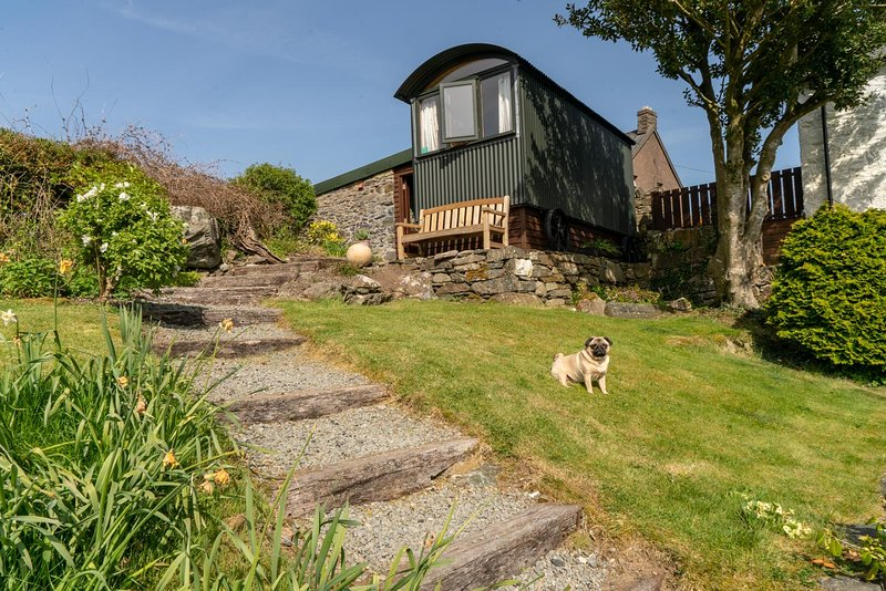 La cabane de Glyn Shepherds complète avec une visite occasionnelle de Sybil le carlin amical!