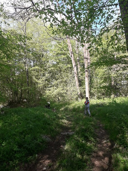 Itinéraires de randonnée
