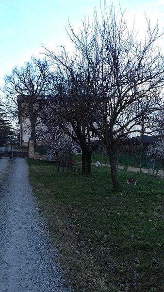 Nuovo B&B sulle colline a 20 km da Parma, holiday rental in Calestano