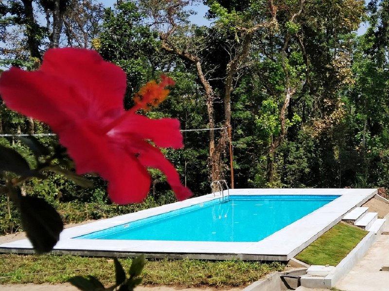 Kalyan Cool - Room in villa 1 (not entire villa), holiday rental in Hanbal