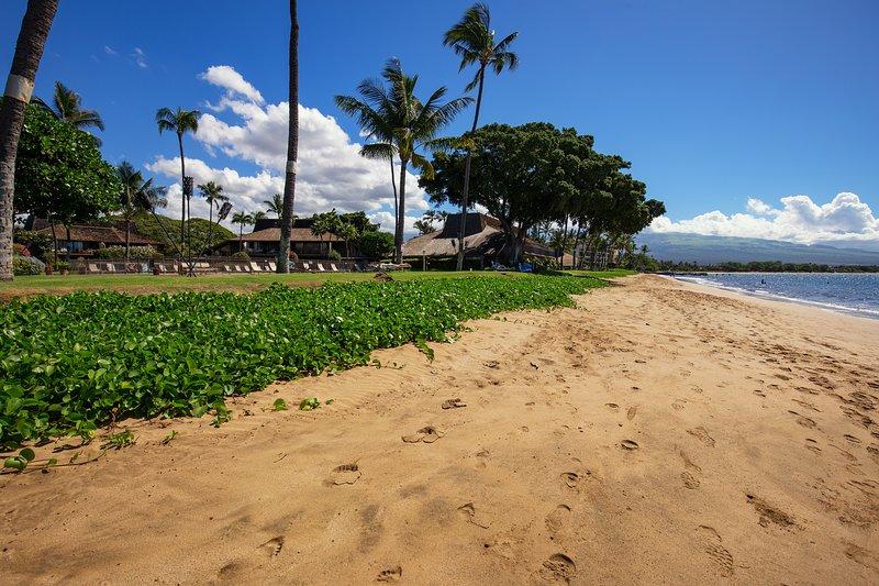 Amazing Oceanfront Condo ★ Steps from the Beach ★ Maalaea Surf Resort C7, vacation rental in Kihei
