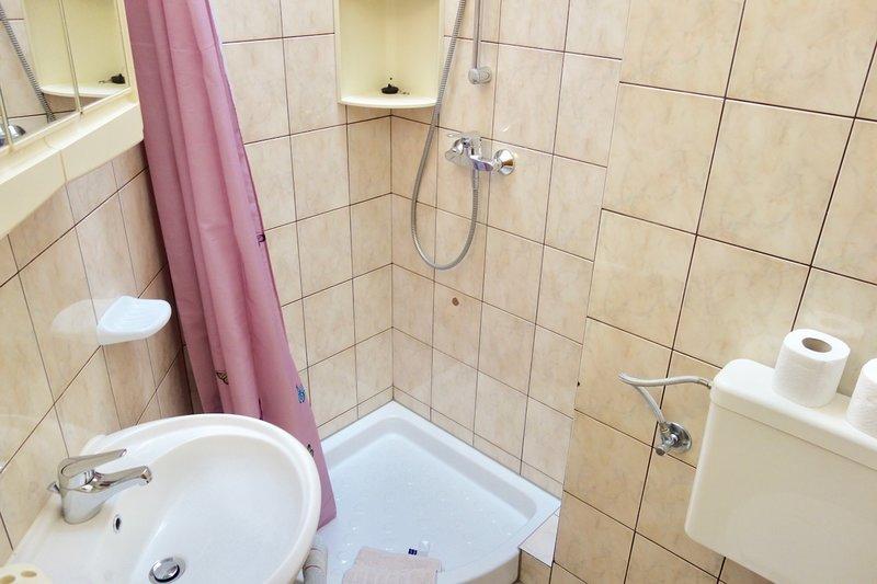A4(2+2): bathroom