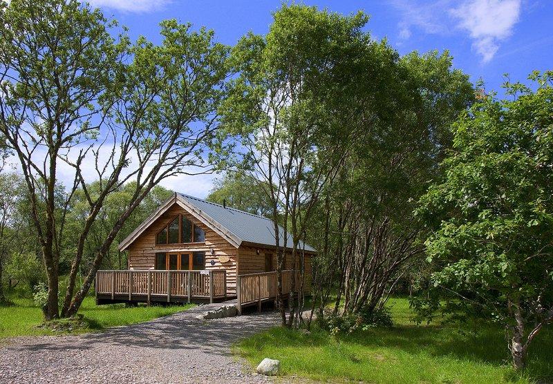 Silver Birch Log Cabin, holiday rental in Portsonachan
