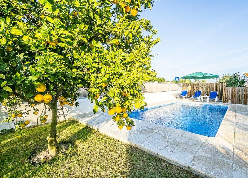 Monte da Carrasqueira Villa Sleeps 10 with Pool - 5779626, location de vacances à Carvalhal