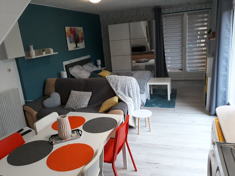 Nice studio with shared pool & Wifi, holiday rental in Saint-Apollinaire