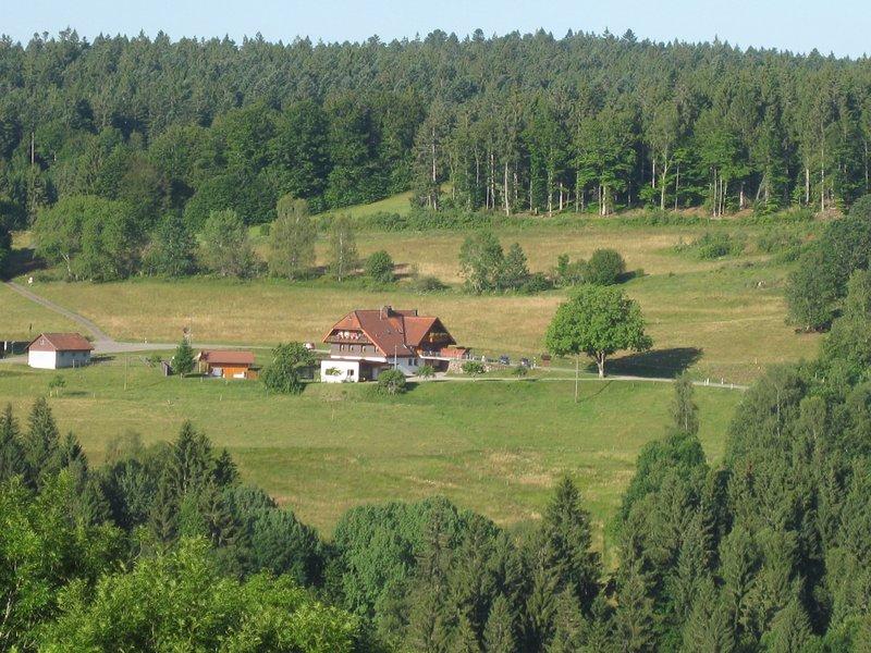 Hausansicht von der gegenüberliegenden Talseite