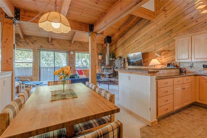 Smokey Plaza Condo 1, vacation rental in Ketchum
