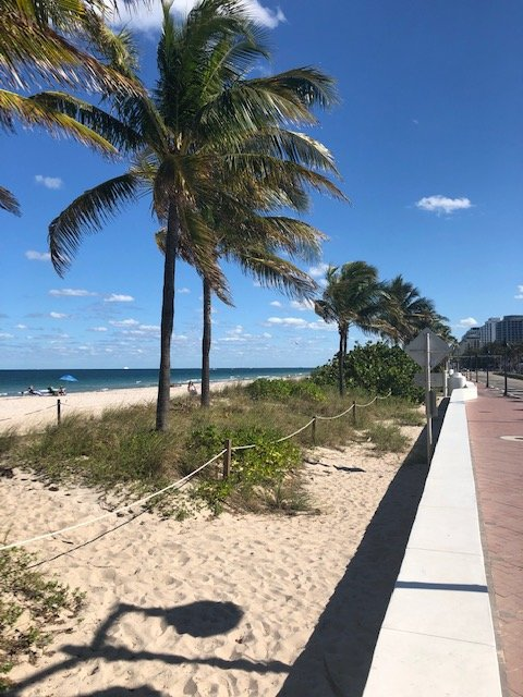Beautiful Fort Lauderdale Beach 1-mile away from property.