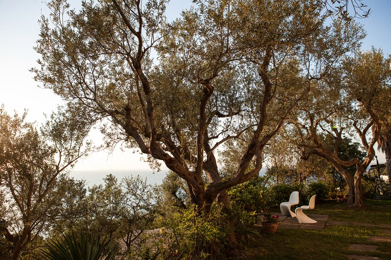 Amazing villa with pool, holiday rental in Marciano